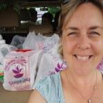 stop and shop pea pod pick up, keri wilmot, toy queen