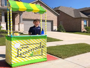 Boy_lemonade_stand